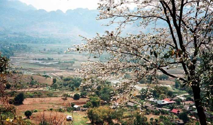 Nâng mũi S Line ở Điện Biên