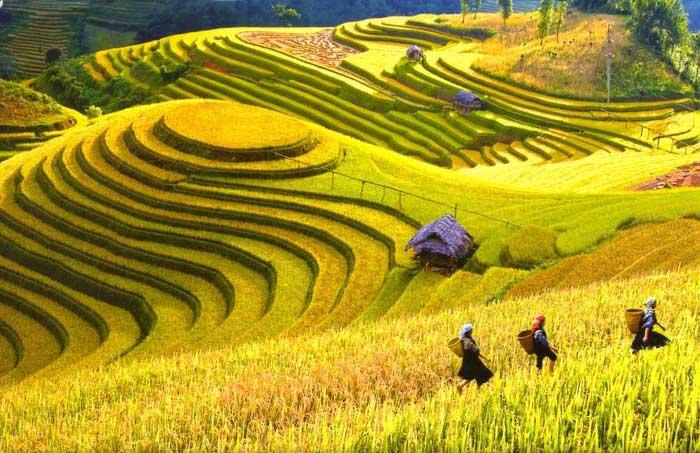 Nâng mũi S Line ở Lai Châu